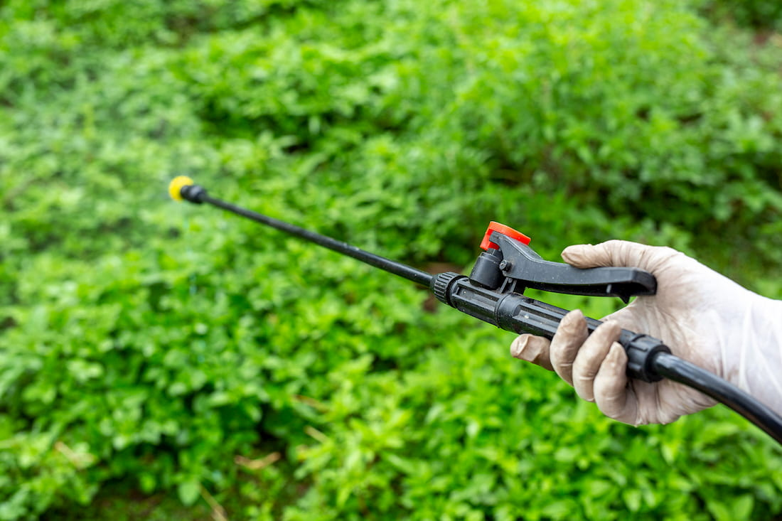 uso de pesticidas en la producción de alimentos