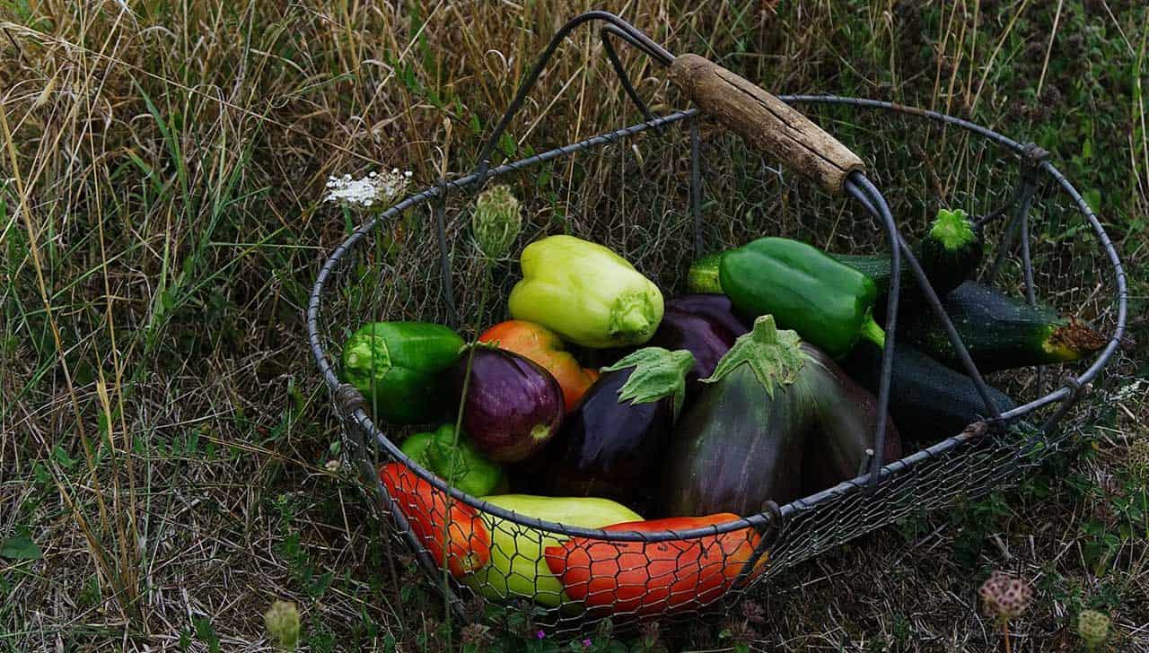 Tienda ecológica de alimentos en Madrid